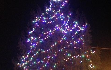 Tree and Leg Lamp Lighting Ceremonies