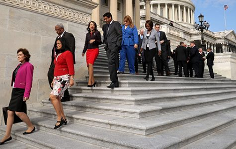 The 116th Congress and its Glorious Diversity