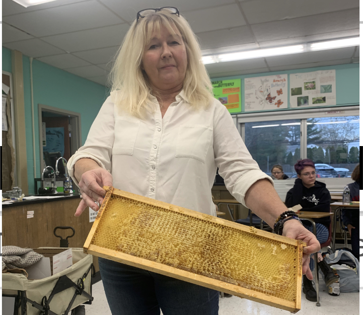 Bee-utiful Bees: How anyone can become a beekeeper