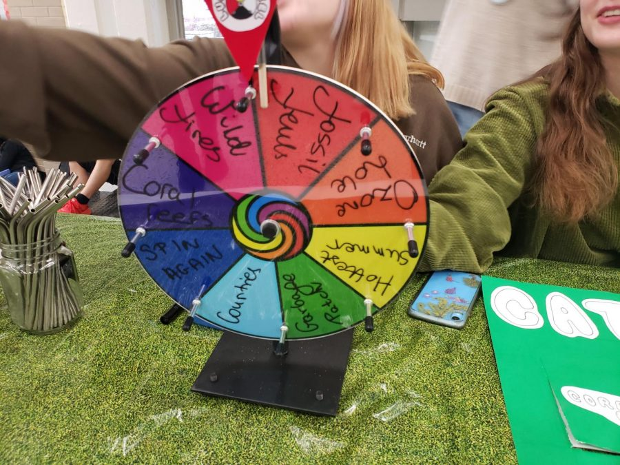 Spin+the+wheel+to+choose+a+question...