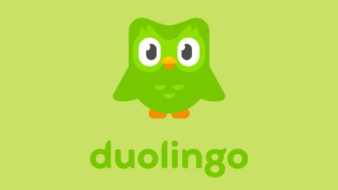 At the beginning of the pandemic, I made a promise to myself: one Spanish lesson on Duolingo a day. What started as a pandemic hobby has now become a part of my daily routine — I'm now 535 days in and counting.